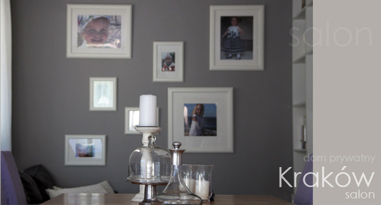 aa_interior design_dom_ salon_1